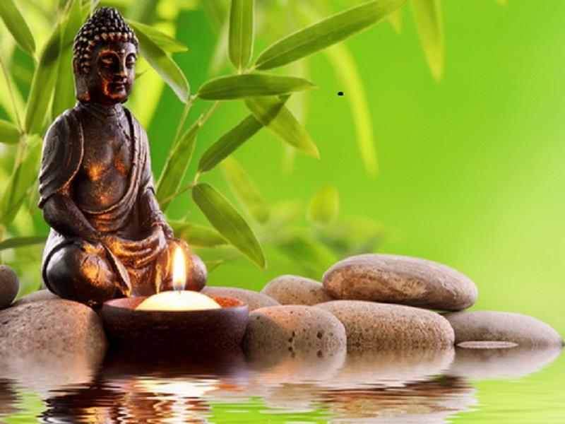 Medicina tradicional china 2 n